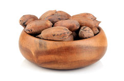 Pecan nuts Stock Images