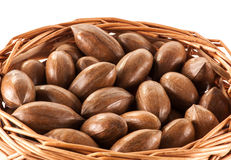 Pecan nuts in a basket. A close up of unshelled pecan nuts in a wicker basket royalty free stock images