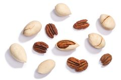 Pecan nuts c.illinoinensis seeds, top, paths stock photo