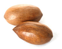 Pecan nuts in closeup Stock Images