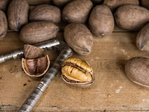 Pecan nuts and cracker Royalty Free Stock Image