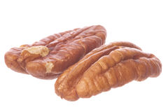 Pecan Nuts Isolated Stock Photography