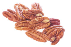 Pecan Nuts Isolated Royalty Free Stock Images