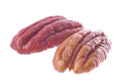 Pecan Nuts Isolated Royalty Free Stock Photography