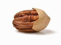 Pecan nuts. Isolated on white royalty free stock photography