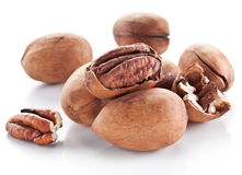 Pecan nuts. Stock Photo