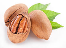 Pecan nuts. Pecan nuts isolated on a white background Royalty Free Stock Photo