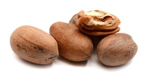Pecan Nuts isolated on white. Pile of pecan nuts isolated. Healthy, protein Stock Image