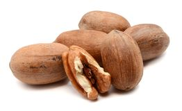 Pecan Nuts isolated on white. Pile of pecan nuts isolated. Healthy, protein Stock Photo