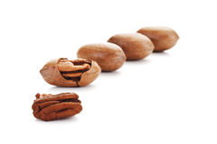 Pecan nuts with kernel Stock Photos