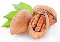 Pecan nuts with leaves. Stock Photos
