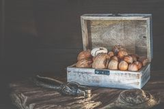 Pecan nuts and macadamia walnuts in a box with pegs for nuts on a wooden background. Copy space.  stock photography