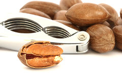 Pecan nuts and nut-cracker Royalty Free Stock Photo