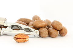 Pecan nuts and nut-cracker Stock Images