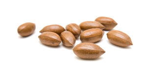 Pecan nuts scattered; Stock Images