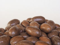 Pecan nuts uncracked Royalty Free Stock Photos