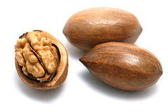Pecan nuts and walnut Royalty Free Stock Photo