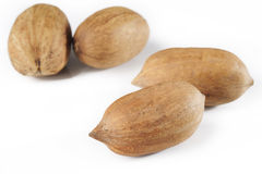 Pecan nuts on white Royalty Free Stock Photography
