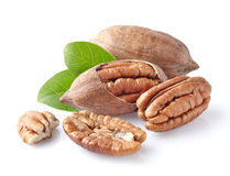 Pecan nuts. On a white background royalty free stock photos