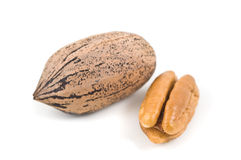 Pecan nuts on white background Stock Photography
