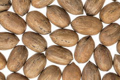 Pecan nuts on white background Royalty Free Stock Photography