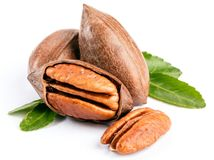Pecan nuts on a white table closeup. royalty free stock image