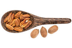 Pecan nuts on wooden spoon Stock Images