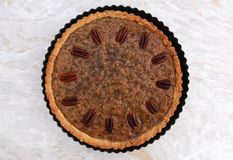 Pecan pie fresh from the oven Stock Image