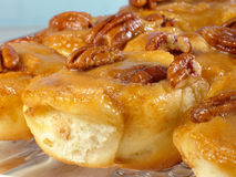 Pecan Sticky Buns Royalty Free Stock Photos