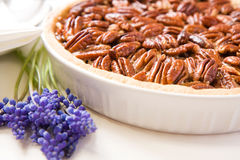 Pecan Tart Royalty Free Stock Photos