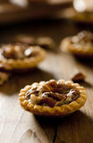 Pecan Tartlet Stock Photography