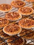 Pecan tarts Royalty Free Stock Image