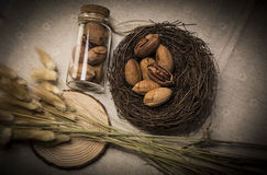 Pecan. United States nuts, Pecans, United States Pecan, casual food, nuts Stock Photo