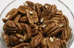 pecannötter Arkivfoto
