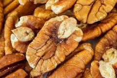 pecannötter Fotografering för Bildbyråer