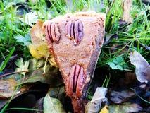 Pecannoot en kumquat pastei Stock Afbeeldingen