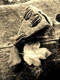 Pecannootpastei op houten achtergrond Stock Afbeeldingen
