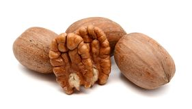 pecans photographie stock