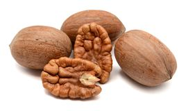 pecans fotos de stock