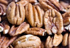 Pecans. A close up shot of fresh pecans ready for the holiday baking Royalty Free Stock Photo