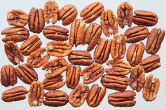 Pecans Stock Photography