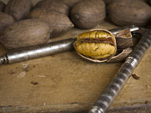 Pecans and nut cracker Stock Photo