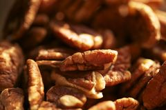 Pecans Nuts Royalty Free Stock Image
