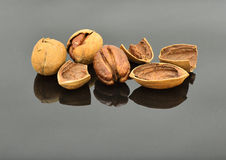 Pecans. A pile of pecans on the gray specular  background Stock Photo