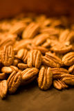 Pecans in studio Stock Images