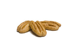 Pecans on White Royalty Free Stock Image