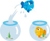 Pecera cambio (vector). Love orange bleu fish in fishbowl cartoon Royalty Free Stock Photos