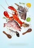 Peces de mar crudos que vuelan con los ingredientes para cocinar Concepto de la preparaci?n de comida fotografía de archivo