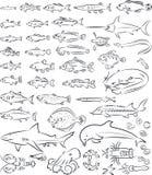 Peces de mar y criaturas stock de ilustración