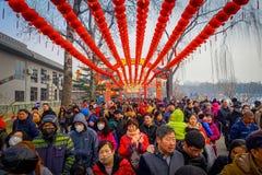 PECHINO, CINA - 29 GENNAIO 2017: Lunghe file di gente che assiste ai nuovi anni giusti nel parco di Longtan, tradizionali Fotografie Stock